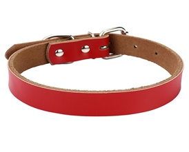 Mogoko PU Leather Waterproof PVC Buckle Dog Pet Collar -- 3 Adjustable Sizes 4 Color for Small, Medium or Large dog(L Fits 14.1